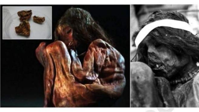 Secuencian genoma de una momia infantil de hace 500 años víctima de un ritual.