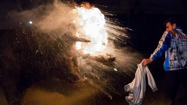 Imagen de la un momento del Toro Jubilo que tuvo lugar este sábado en la localidad soriana de Medinaceli.