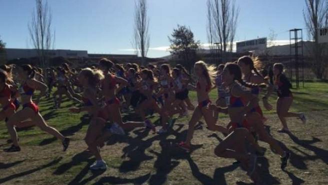 Trofeo Diputación de Cáceres de Campo a través