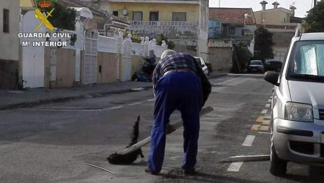 Imagen del presunto autor de los hechos, apaleando al gato.