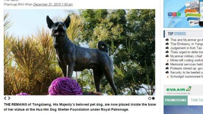 Una captura del diario The Nation, con una imagen de la perra Thong Daeng.