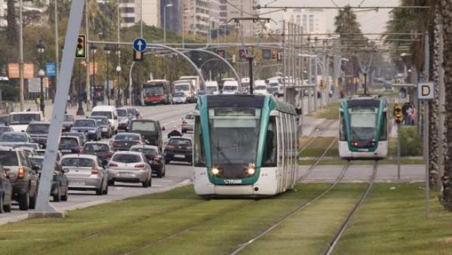 Dos vehículos del TramBaix circulan por una plataforma segregada de la Diagonal.