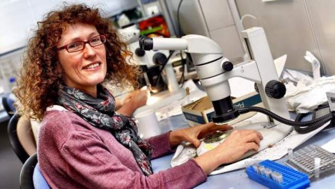 Isabel Martínez es profesora del Departamento de Biología, Geología, Física y Química Inorgánica de la URJC.