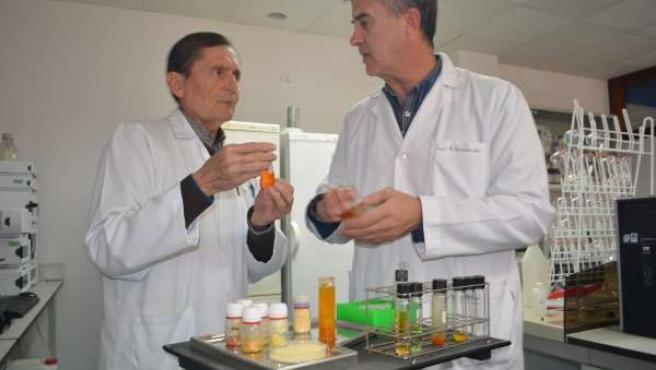 Los profesores de la UPCT José Antonio Fernández y Juan Ignacio Moreno