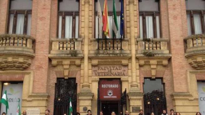 Movilización de profesores universitarios andaluces