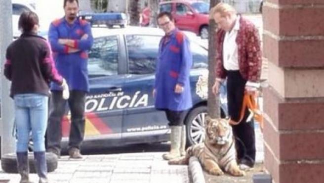 Trabajadores del circo con el tigre escapado junto a un coche de policía
