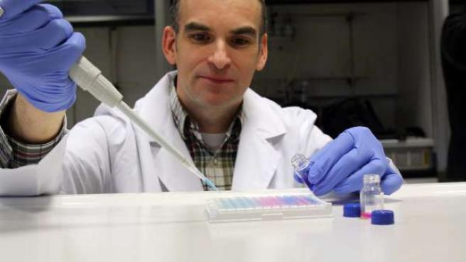 Investigador del proyecto ProteinConjugates