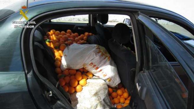 Naranjas intervenidas por la Guardia Civil.