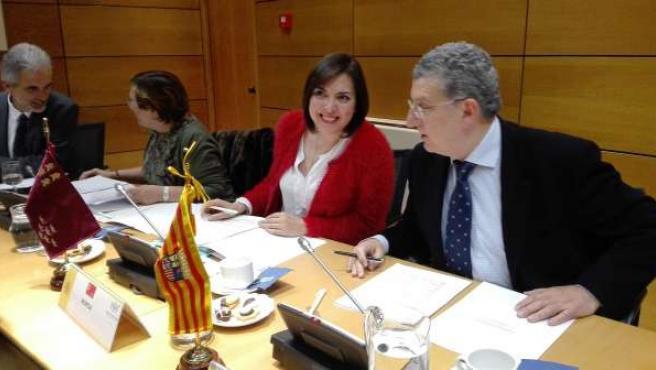 Guillén En La Reunión Del Pleno Del Consejo Interterritorial De Salud