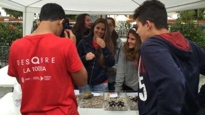 Jornadas de Ciencia en la Calle 'Diverciencia', en Algeciras (Cádiz)