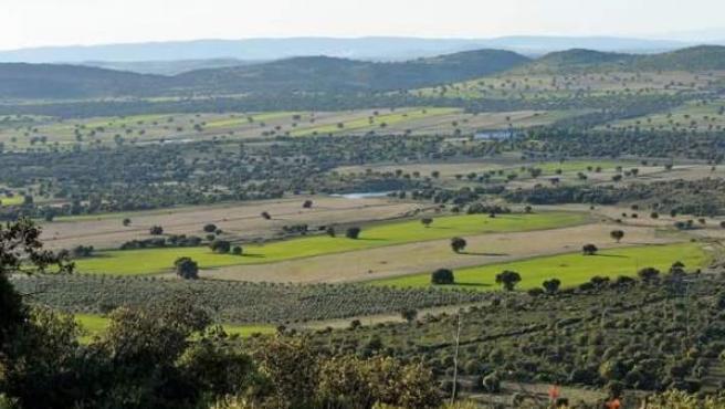 Campo de Montiel (Ciudad Real). Zona ZEPA (Zona de Especial Protección de las Aves).