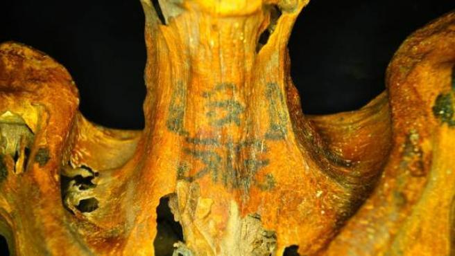 Uno de los tatuajes hallados en la momia y que pueden verse sin infrarrojos.