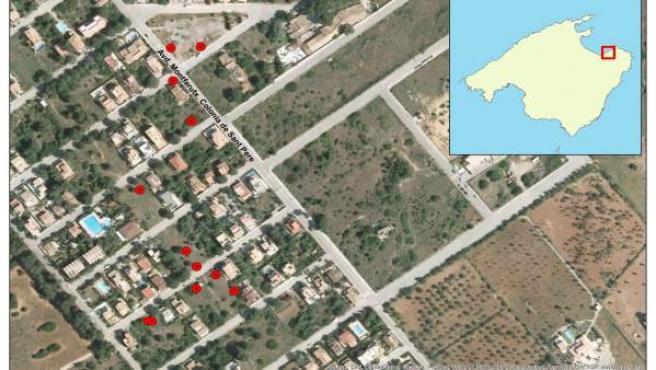 Primeros puntos afectados en la Colonia de Sant Pere