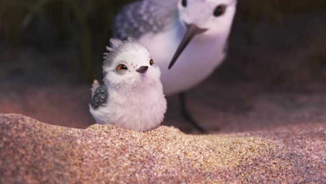 Más imágenes de 'Piper', tu próximo corto favorito de Pixar