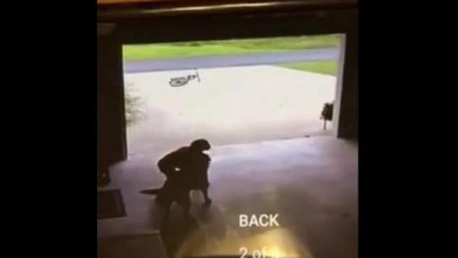 Josh abrazando a Duchess, en una imagen de las cámaras de seguridad.