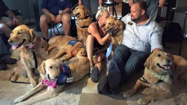 Familiares de las víctimas del tiroteo de Orlando, reconfortados por un grupo de perros.