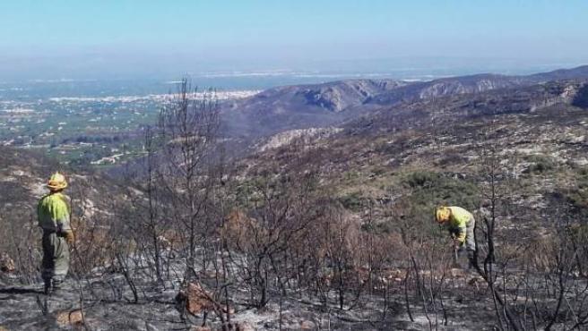 Brigadas refrescando la zona afectadas por el incendio de Carcaixent