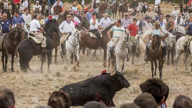 Un momento de la celebración del Toro de la Vega en 2014.