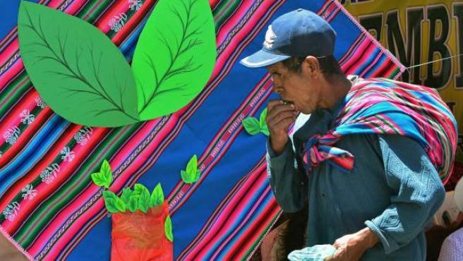 El cultivo de la coca es una forma de subsistencia para campesinos en países andinos como Colombia y Bolivia.
