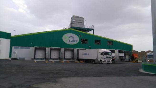 Centro de Avinatur en Purullena