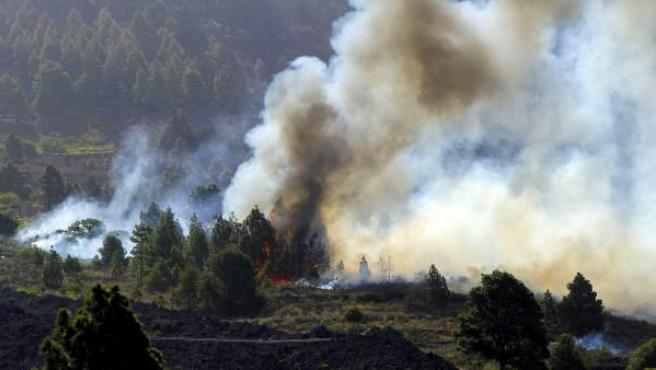 Las llamas del incendio forestal que desde el miércoles afecta a La Palma afectan a una zona de Tachando.