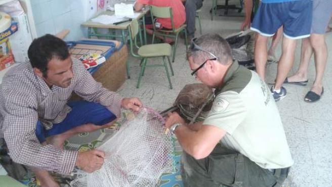Precinto de las nasas para la captura del cangrejo rojo en Sevilla