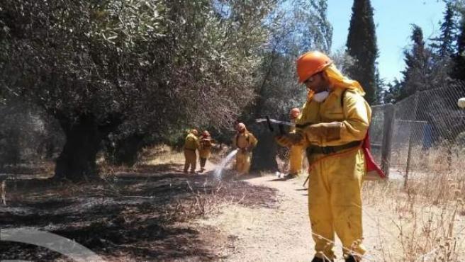 Efectivos del GLPA de las Siete Fincas participaron en la extinción del incendio