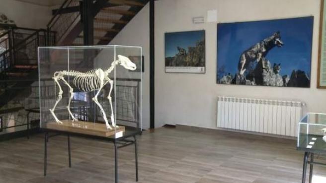 Centro de Visitantes El Lobo