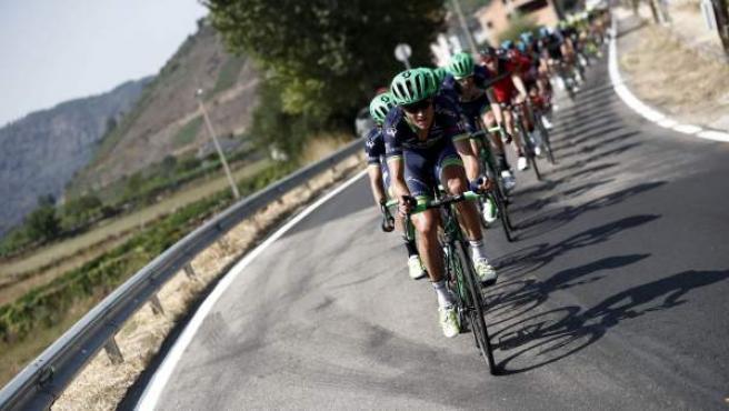 El pelotón durante la sexta etapa de la Vuelta Ciclista a España 2016, disputada entre la localidad lucense de Monforte de Lemos y la orensana de Luintra en la Ribeira Sacra, con un recorrido de 163,2 kilómetros.