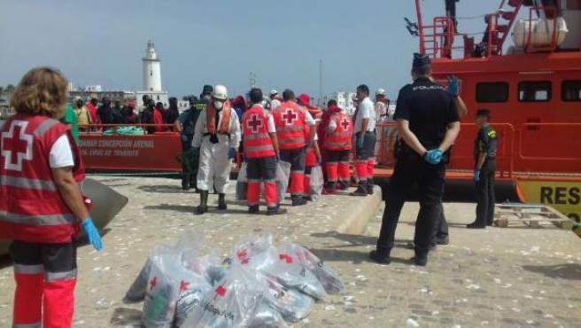 Personas atendidas por Cruz Roja en el puerto de Málaga