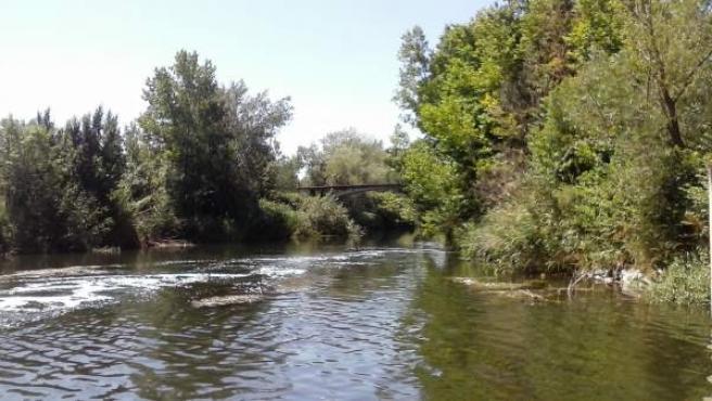El río Henares.