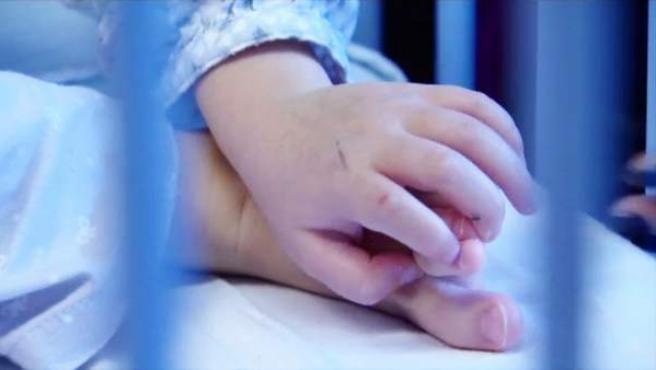 La polémica eutanasia a menores.