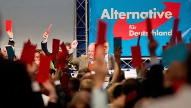 El partido de ultraderecha Alternativa para Alemania (