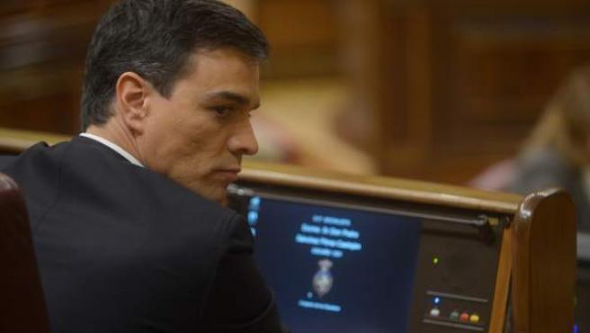 El secretario general del PSOE, Pedro Sánchez, sentado en su escaño del Congreso de los Diputados.