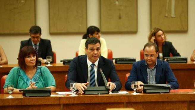 Micaela Navarro, Pedro Sánchez y César Luena, ante el Grupo Socialista