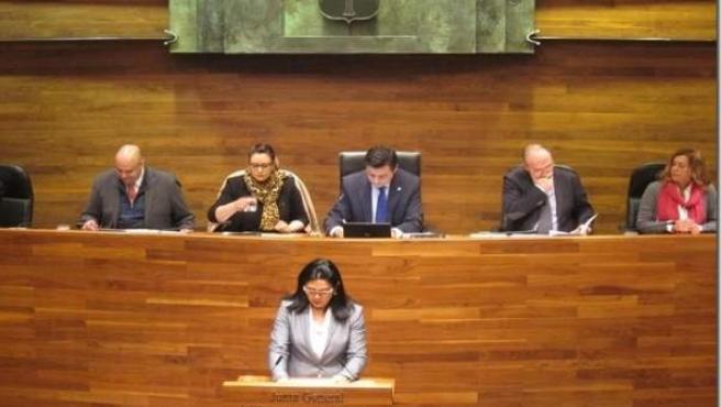 Carmen Fernández interpelando al consejero durante el Pleno.