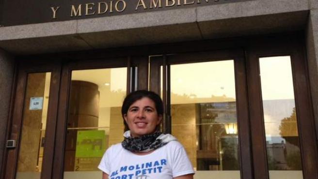 Al Molinar, port petit visita el expediente de ampliación en Madrid