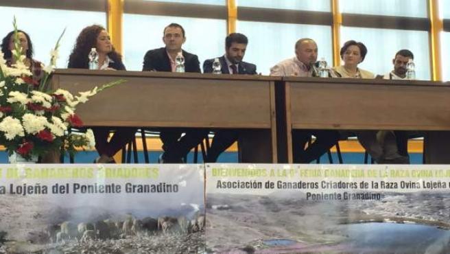 Inauguración de Feria de Ganado de Loja (Granada)