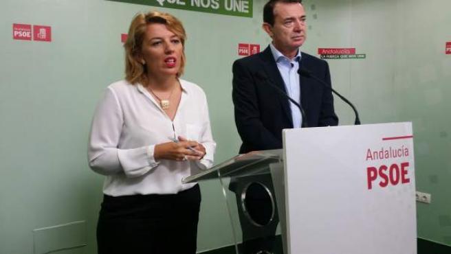 La diputada provincial del PSOE Sonia Ferrer y el senador Juan Carlos Pérez Nava