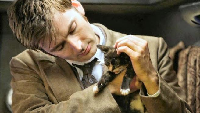 David Tennant: El hombre que susurraba a las mascotas