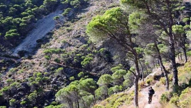 Gran Senda turismo senderismo málaga medio ambiente naturaleza