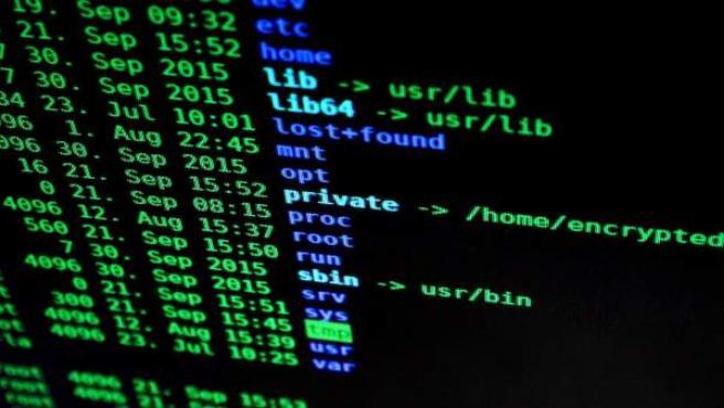 Imagen de una pantalla de un ordenador con información encriptada.