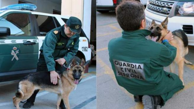 Dos Guardias Civiles Francos De Servicio Rescatan A Una Mujer En Su Domicilio