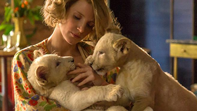 Tráiler de 'The Zookeeper's Wife': Jessica Chastain y sus animales, contra los nazis