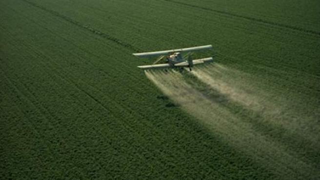 Imagen de un avión sobrevolando un terreno cultivado y fumigando.