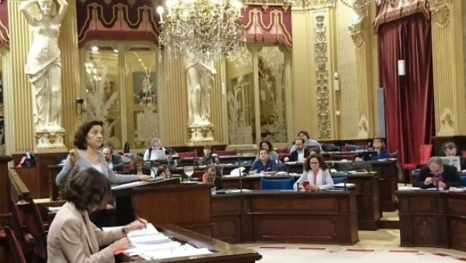 La consellera de Servicios Sociales, Fina Santiago, durante el pleno
