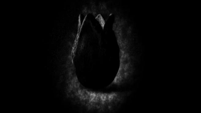 Es oficial: Ya tenemos teaser de 'Alien Covenant' y mañana habrá tráiler