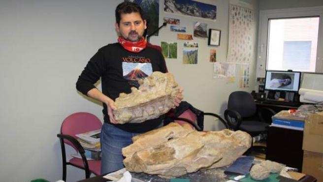 Matías Reolid mostrando los fósiles