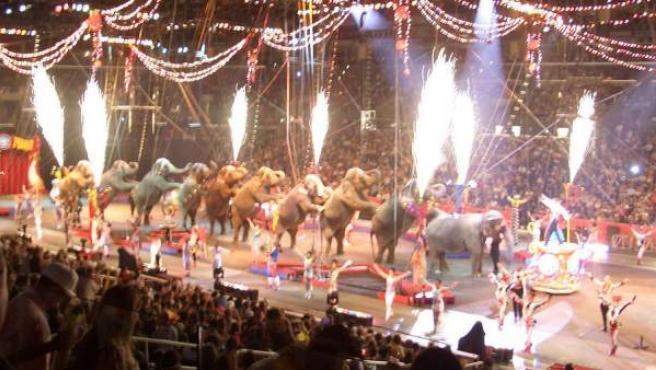 Uno de los espectáculos del Circo Ringling.
