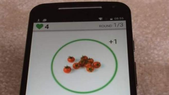 Imagen de FoodT, el juego de móvil que te ayuda a comer menos comida poco saludable.